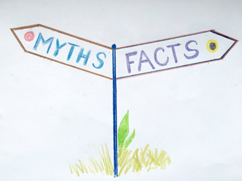 therapy myths featured